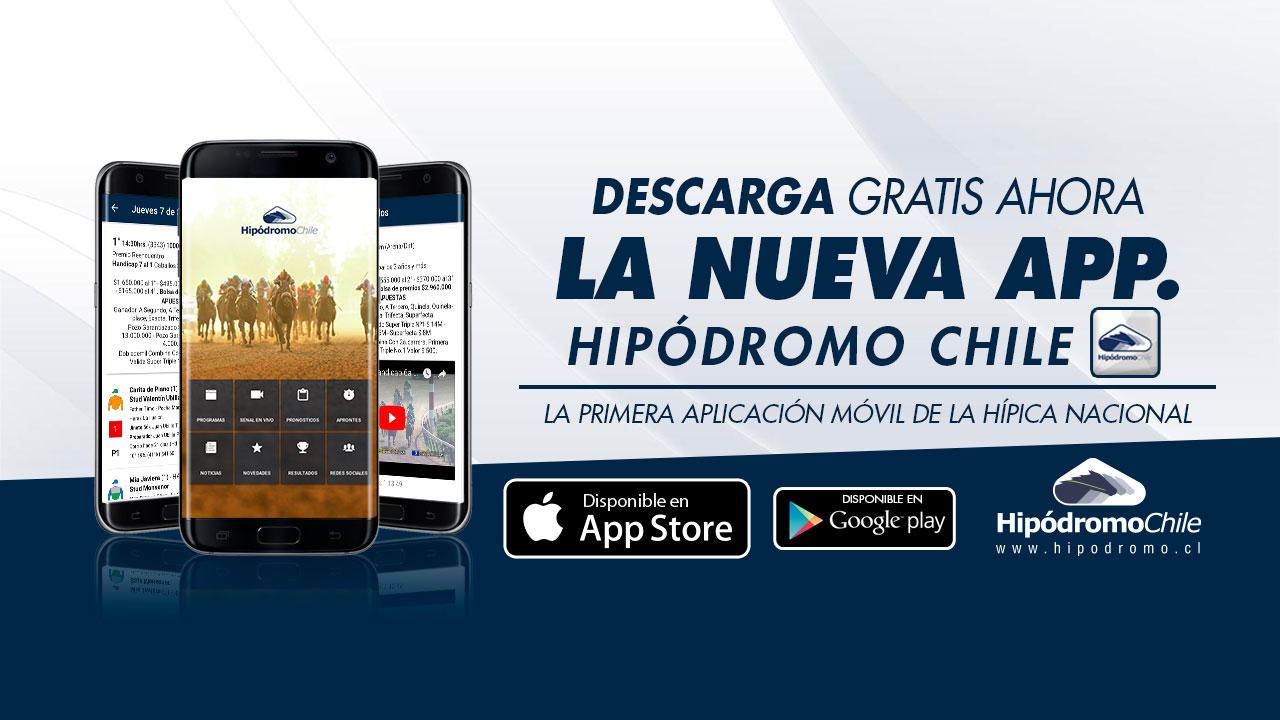 portada-web-app2dis.jpg